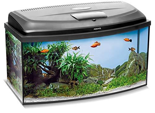 Aquael Aquarium Set Classic LT inkl. Abdeckung, Filter, Heizer COMFORTZONE Gold 25W, LED Beleuchtung (60x30x30 gewölbt)