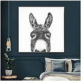 Unbekannt Mode Schwarz und Weiß Esel Pferd Poster Tier