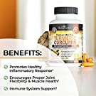 Turmeric Curcumin with BioPerine 1500mg - Natural Joint & Healthy Inflammatory Support with 95% Standardized Curcuminoids for Potency & Absorption - Non-GMO, Gluten Free Capsules with Black Pepper. #3