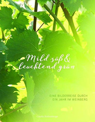 Mild süß & leuchtend grün: Eine Bilderreise durch ein Jahr im Weinberg