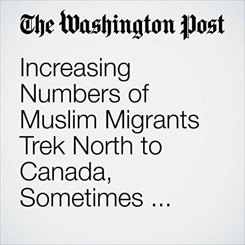 Increasing Numbers of Muslim Migrants Trek North to Canada, Sometimes through Freezing Temperatures and Snow copertina