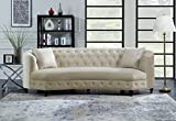Iconic Home Leeba Kidney Shaped Club Sofa Tufted Velvet Down Mix Cushions with Espresso Finished Wood Cone Legs and 2 Accent Throw Pillows Couch Modern Traditional, Champagne