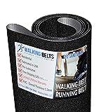 WALKINGBELTS Walking Belts LLC - Sole S73 Version1 Treadmill Running Belt 1ply Sand Blast + Free 1oz Lube