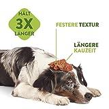 Marengo Zahnbürste XS, 1er Pack (1 x 360 g) - 4