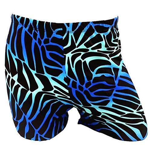 YANODA Badehosen Sexy Männer Männliches Tier Zebra Gedruckt Schwimmbecken Badeanzug Badebekleidung Badehosen Boxershorts Badehose Slip Badeanzug Wear, Zebra, L