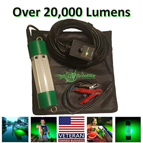 IllumiSea 20,700 Lumen Green Underwater LED Fish Attracting Light for Fresh & Saltwater - 12v Clamps & 110-250v Converter Included with 30ft Power Cord