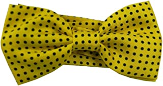ZorYer Papillon Scarf Paisley Ascot Cravatta per Uomo Sciarpa di Seta Cravatta da Uomo Cravatta da Uomo Jacquard Set Tasca Quadrata Gemelli S802