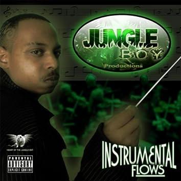 Instrumental Flows