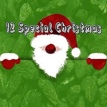 12 Special Christmas