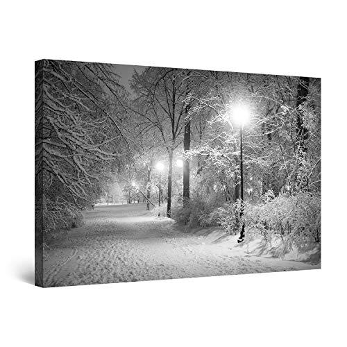 Startonight Cuadro sobre Lienzo en Blanco y Negro Invierno en el Parque, Impresion en Calidad Fotografica Enmarcado y Listo Para Colgar Diseño Moderno Decoración Formato Grande 80 x 120 CM