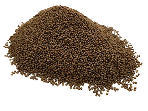 B-Creatieve meerval Pellets 2mm PREMIUM TROPICAL FISH FOOD Cory Pleco Onderste feeders (100g)
