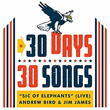 Sic of Elephants (30 Days, 30 Songs) [Live] [feat. Jim James]