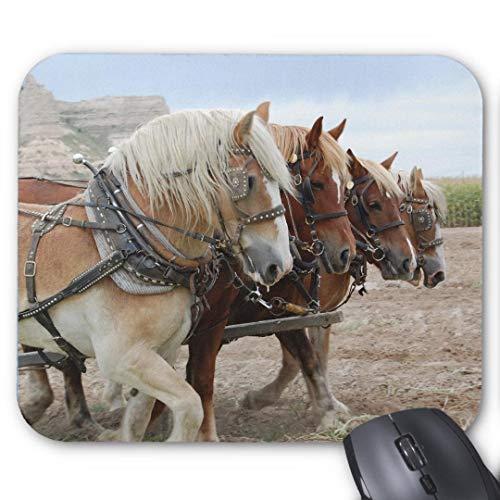 Mouse-Pad 24*20cm | Qualit?ts-Mauspad aus strapazierf?higem Kunststoff mit rutschfester Unterseite aus Zellkautschuk - passend f¨¹r alle g?ngigen Mouse-amerikanisches Arbeitspferd