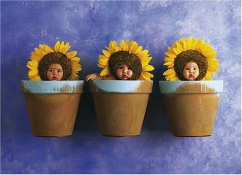 Schmidt Spiele 57948 - Anne Geddes, Sonnenblumen-Trio, 1000 Teile Puzzle