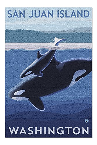 1000 piece puzzles orca - 5