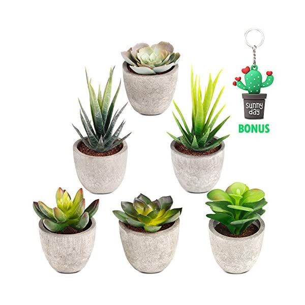 Artificial Succulent Plants Potted, Set of 6 Mini Artificial Plants with Pots Assorted Decorative Faux Succulents in Pots for Office Wedding Home Decoration Ultra Realistic Design