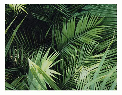 Glorex 6 1330 000 Design behang, palmmet, ideaal voor knutselen en decoreren, ca. 120 x 53 cm.