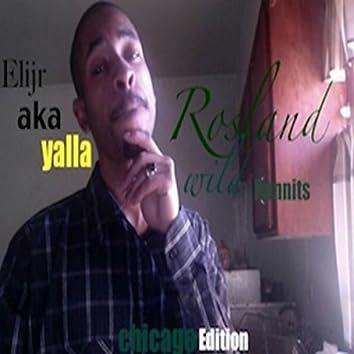 Roseland Wild Hunnits (Chicago Edition)