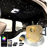FIREWORK Bluetooth 16W Twinkle Fiber Optic Star Ceiling Light Kit with APP/Remote Music Mode RGBW LED Starlight Headliner for Car Home Ceiling Decoration, 460pcs 0.03in 9.8ft