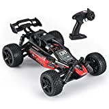 Fcoreey RC Cars, High Speed Remote Control Car for Adults Boys Kids, 1:14 Scale, 48+ km/h, 4WD All Terrain Off Road Monster Trucks, 2.4GHz Rally Buggy Toys, Break The Wind Streamline Body Racing