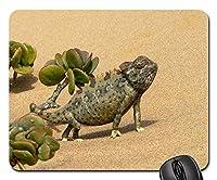 マウスパッド-カメレオン爬虫類動物の砂漠の砂