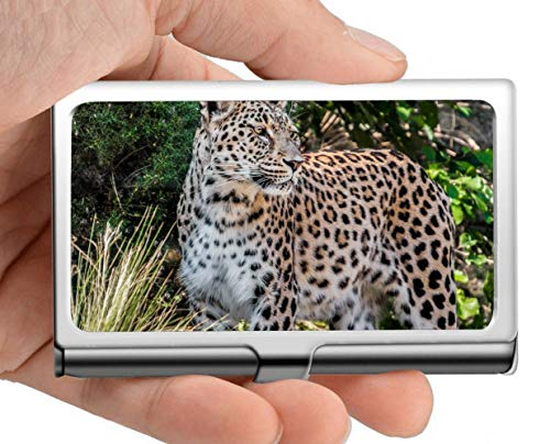 Business Name Card Holder,Leopard,Persian Leopard,Portrait Business Card Case Men's Women's