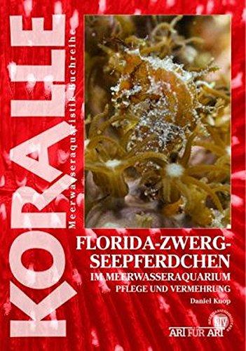 Florida-Zwergseepferdchen im Meerwasseraquarium: Pflege und Vermehrung (Art für Art / Meerwasser)
