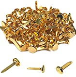 100 Pcs Brass Paper Fasteners, 8x17mm Plated Mini Brads for Scrapbooking Crafts DIY Projects (Gold)