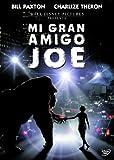 Mi gran amigo Joe [DVD]