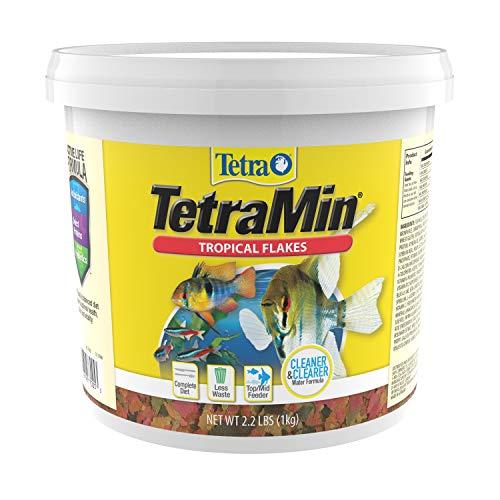 Tetra TetraMin Tropical Flakes 2.2 Pounds, Nutritionally Balanced Diet For Aquarium Fish (77005)
