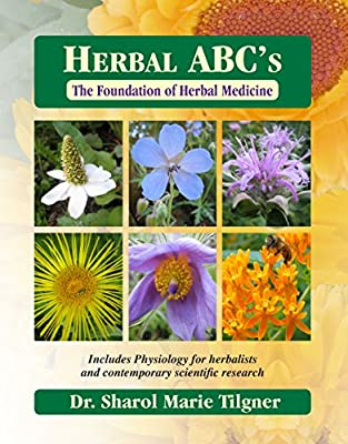 Herbal ABC's The Foundation of Herbal Medicine from Wise Acres LLC