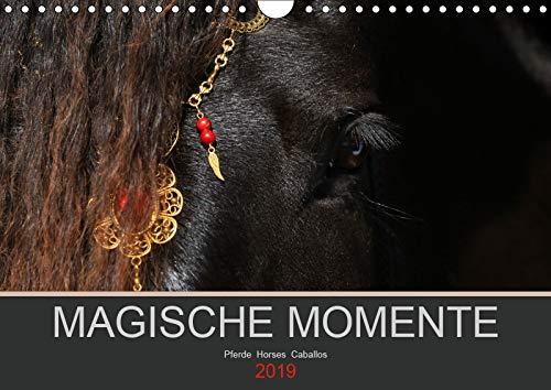 Magische Momente - Pferde Horses Caballos (Wandkalender 2019 DIN A4 quer): Die Magie der Pferde. Fotografien vor schwarzem Hintergrund (Monatskalender, 14 Seiten ) (CALVENDO Tiere)