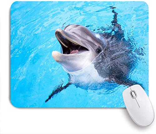 Dekoratives Gaming-Mauspad,Blue Underwater Dolphin Pool Wasser Niedlicher Bottlenose Fisch Sea Smile,Bürocomputer-Mausmatte mit rutschfester Gummibasis