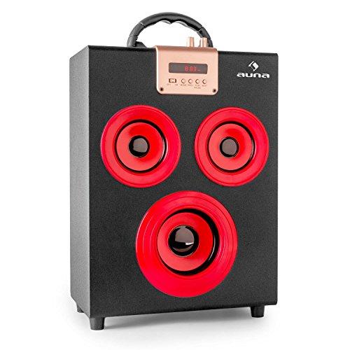 auna Central Park - Bluetooth 2.1-Lautsprecher, Box, UKW-Radio, automatischer Sendersuchlauf, USB-Port/SD-Slot, LED-Display, AUX, Akku-Betrieb, USB-Ladekabel, Tragegriff, schwarz-rot