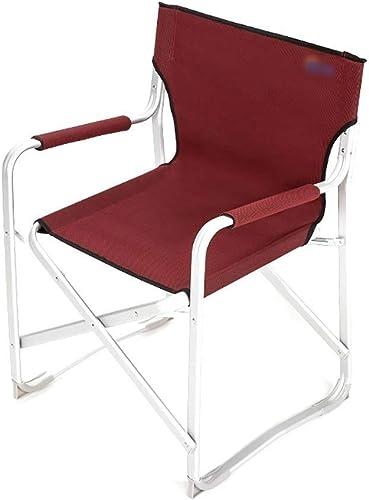 Jueven Chaises de Camping Portables de Taille Moyenne avec accoudoirs, Chaise de randonnée légère avec Sac de Transport for Camp extérieur, Pique-Nique, Plage, Festival