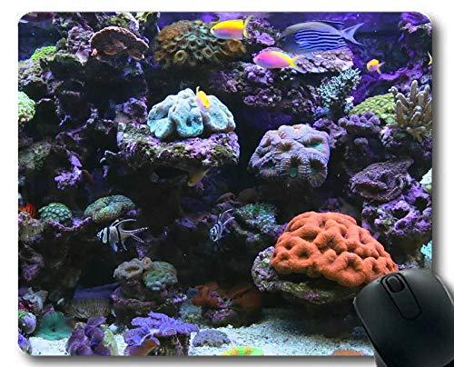 Mauspad lustig, Ozeanfischthema einzigartiger Gaming-Mauspads