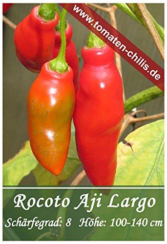 Chili Samen - 15 Stück - Rocoto Aji Largo