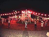 祭り用ちょうちん電気コード 30灯ソケット陶器製、防水ゴム付き,レビューを書くとLED電球30個も付属 、65cm間隔,箱入り