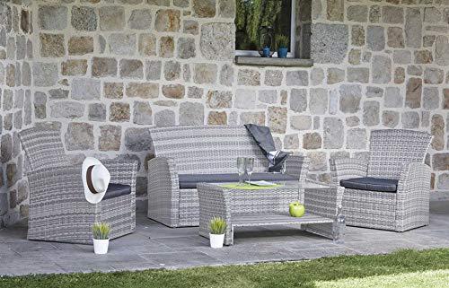 PEGANE Salon de Jardin en résine tressée 1 canapé de 2 Places et 2 fauteuils + Une Table Basse Coloris Gris