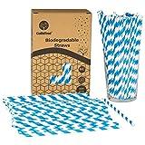 GoBeTree 300 Pajitas de Papel biodegradables con Rayas Azules, Pajita Desechables ecológicas...