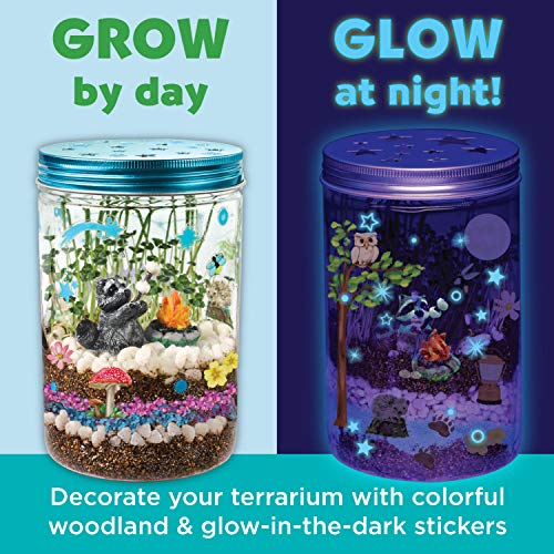 Grow 'N Glow Terrarium Kit