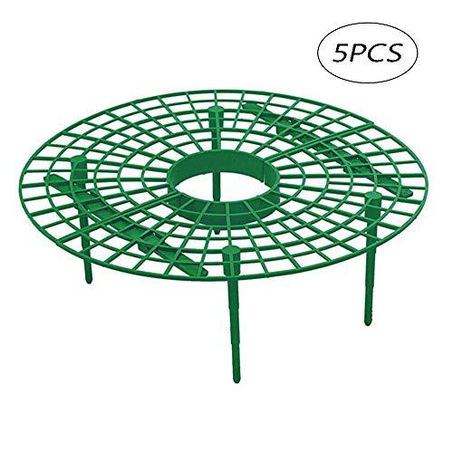 KEISL 5er Packung Strawberry Plant Support Squash Cradle Plant Unterstützt den Schutz | Einstellbare Stützen für Erdbeeren Salat und Tomaten | Schneckenschutz und Schutz vor