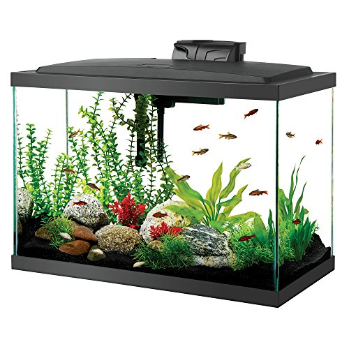 Aqueon Aquarium Fish Tank Kit, 20 gallon, Black (100530578)