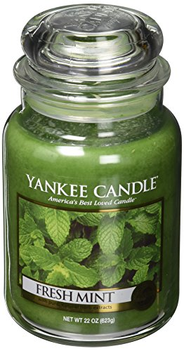 Yankee Candle Large Jar Candle, Fresh Mint