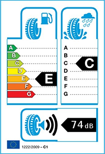 ROADSTONE N 1000–215/45 R17 91 W – E/C/74 – Pneu d'été