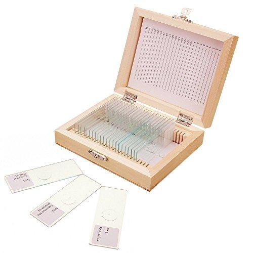 Jiusion 25Pcs Portaobjetos de microscopio preparado con caja de madera Animales Insectos Plantas Flores Muestra de biología, Microscopio estereoscópico de diapositivas para Educación Ciencias