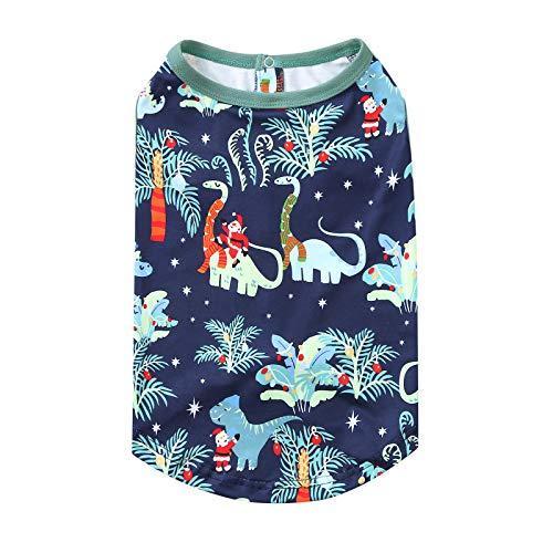 Navidad coincidencia familia pijamas dinosaurio carta impresa superior pantalones impresos Navidad familia pijamas festivas pjms mujeres hombres niños niños niño mameluco bebé ropa de dormir