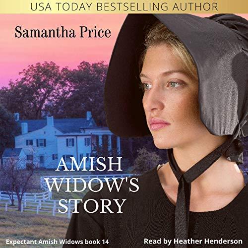 Amish Widow's Story cover art