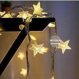 クリスマス ライト ストリングライト 星型装飾LEDライト USB 6M 40球 室内室外用 パーティー装飾 ウォームホワイト