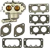 BLTR Carburador, 791230 carburador del reemplazo for los Modelos 699709 y 499804 de Gasolina Piezas de Repuesto Cortasetos Kit carburador De Confianza